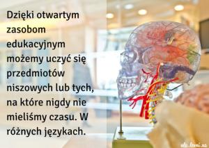Dzięki otwartym zasobom edukacyjnym możemy uczyć się przedmiotów, na które nigdy nie mieliśmy czasu. Najlepiej po angielsku.
